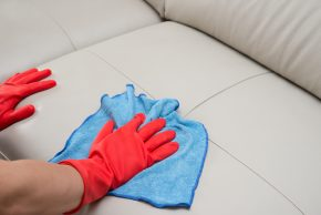 How should we clean carpets and couch upholstery?